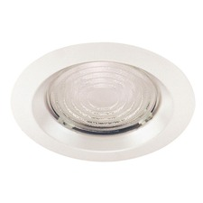 22 Series 6 Inch Fresnel Lens Shower Trim