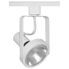 T363 Trac-Master Open Back Line Voltage PAR30 Lamp Holder