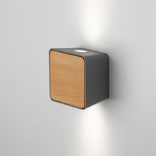 Lab 2 Outdoor Wall Sconce