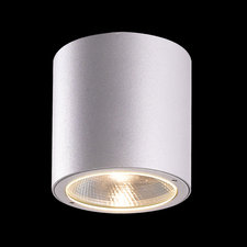 Sky LED Outdoor Flush Mount