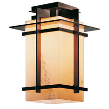 Tourou LED Outdoor Semi Flush Mount