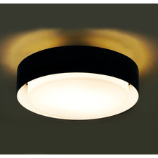 Plaff-on 20 Inch Ceiling Flush Mount