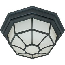 Caged Outdoor Ceiling Flush Mount