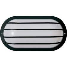 Cage 10 inch Oval Outdoor Wall Sconce