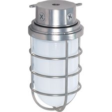 Tube Cage Outdoor Ceiling Flush Mount