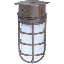 766 Tube Cage Outdoor Ceiling Flush Mount