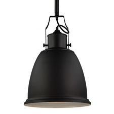 Hobson 14 inch 13W Pendant with Bulb