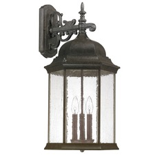 Main Street Outdoor Wall Sconce Clear Glass