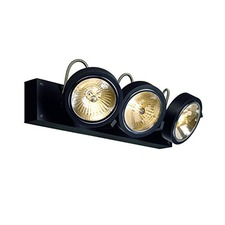 Kalu 1 Light Wall Sconce/Ceiling Mount