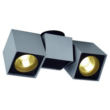 Altra Dice Spot 2 Wall/Ceiling Light Fixture