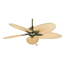 Windpointe Ceiling Fan with Light