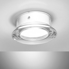 Roc Outdoor Wall/Ceiling Light