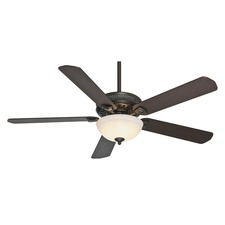 Ainsworth Ceiling Fan with Light