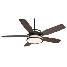 Caneel Bay Outdoor Ceiling Fan with Light