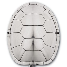 Terrapin Wall Light