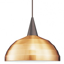Felis Pendant with Canopy