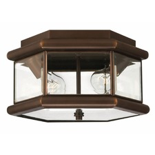 Clifton Park Outdoor Ceiling Light Fixture