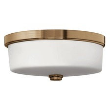 5421 Ceiling Light Fixture