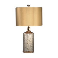 Mercury Lamp with Metallic Shade