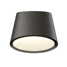 Elips Wall Light
