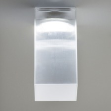 Beetle Long Wall / Ceiling Flush Light