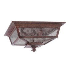 Argent II Outdoor Ceiling Light Fixture