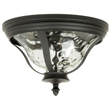 Frances Outdoor Ceiling Light Fixture