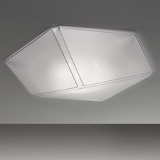 Necky Wall/Ceiling Light