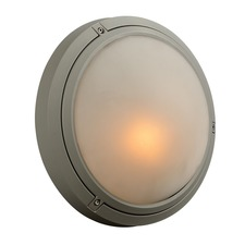 Ricci I Outdoor Wall/Ceiling Light Fixture