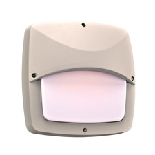 Clarendon II Wall/Ceiling Light Fixture