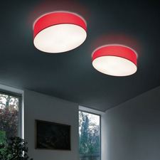 Pank Ceiling Light Fixture