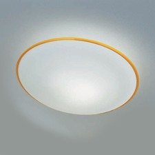 Aurora Ceiling Flush / Wall Light