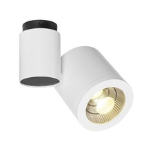 Enola C Spot Ceiling Light