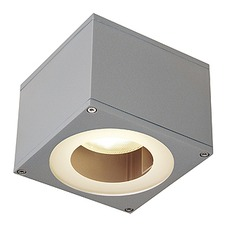Big Theo LED Outdoor Wall Light
