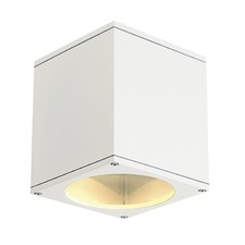 Big Theo Up Down Outdoor Wall Light