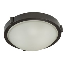 Boise Ceiling Light Fixture