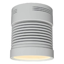 Chroma Z25 Cylinder Ceiling Light Flood Beam