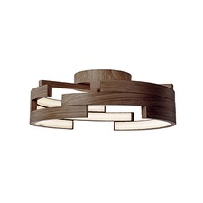 Sophisticated Ceiling Light Fixture