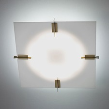 Genesis 16366 Ceiling Light Fixture