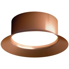 Maine Outdoor Wall / Ceiling Light