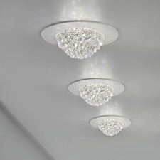 Bool Ceiling Spot Light