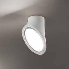 Mabell Ceiling Spot Light