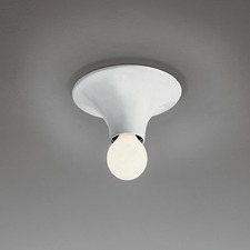 Teti Wall or Ceiling Light