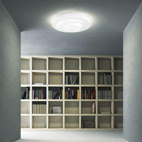 Loop-Line LED Ceiling Light