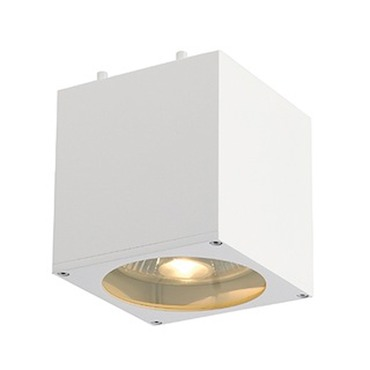 Big Theo Ceiling Flush Mount