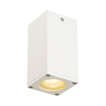 Theo Outdoor Ceiling Light