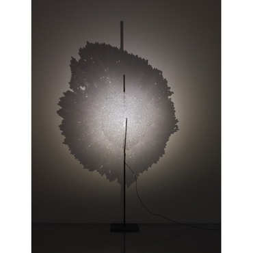 Ombra 4100K Table Lamp by Catellani & Smith | LC-EOM01