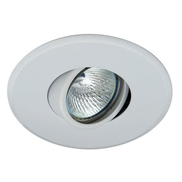 T5000 2.5 Inch Low Profile Adjustable Trim by Contrast Lighting | T5000-11