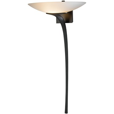 Antasia Bowl Wall Light by Hubbardton Forge | 204720-07-G90