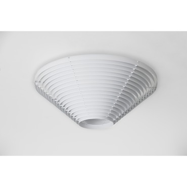 A662B Ceiling Light